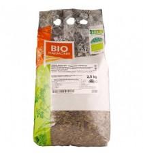 Dýňová semena (loupaná) BIO 2,5 kg BIOHARMONIE