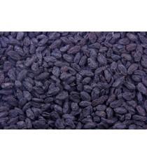 Rozinky černé 3 kg Les Fruits du Paradis